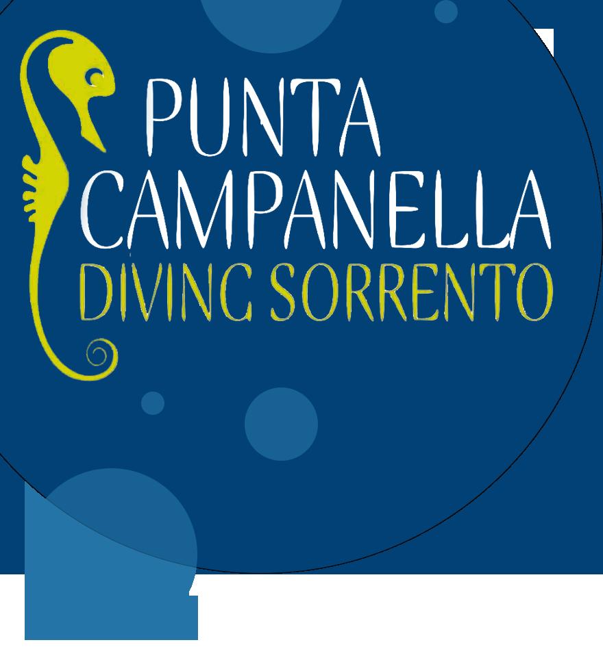 Logo Punta Campanella Diving