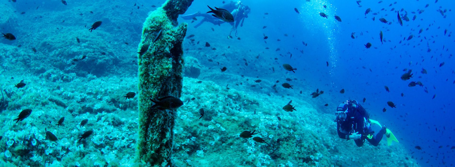 Boat Tour and Diving Tour from Sorrento (5 hour duration with 2 dives)