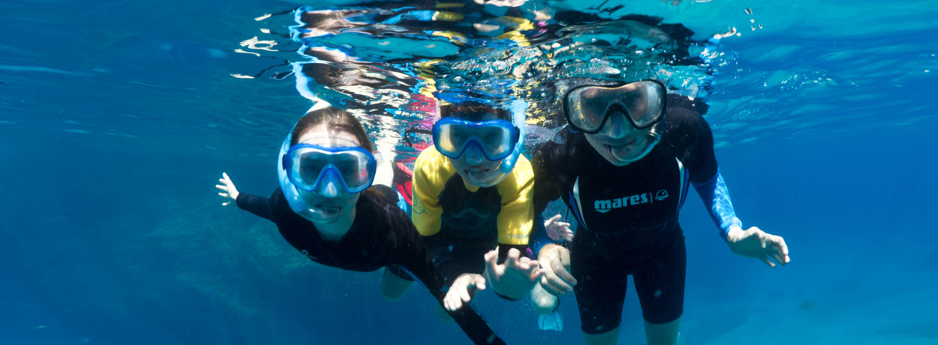 Boat Tour from Sorrento including guided snorkelling with a marine biologist (5-hour duration with 2 dives)
